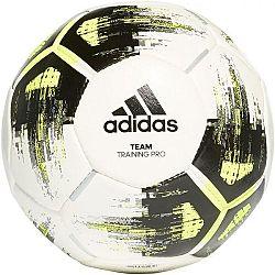adidas TEAM TRAININGPR - Futbalová lopta