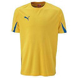 Puma SHIRTS SS TEAM - Športové  pánske tričko